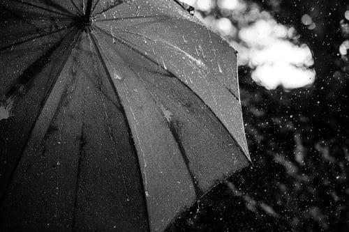 History of Umbrellas / Parasols